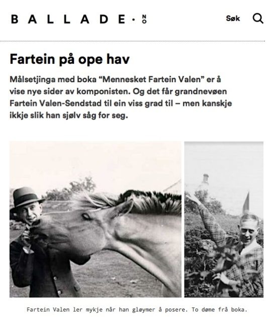 fartein_posering